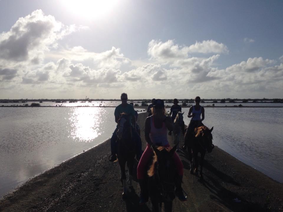 Horseback ride, Cuba