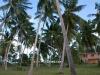 nov-2011-beachhouse-images-010