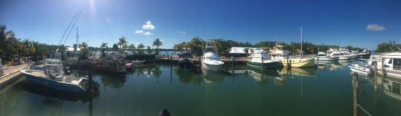 Panorama of the Marina