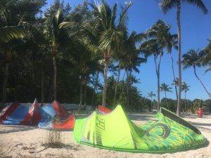 Cabrinha kites and palm trees