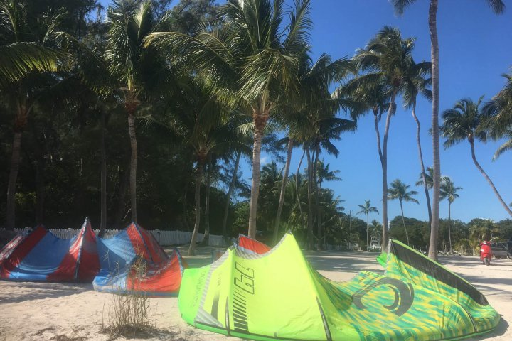 Cabrinha kites and palm trees